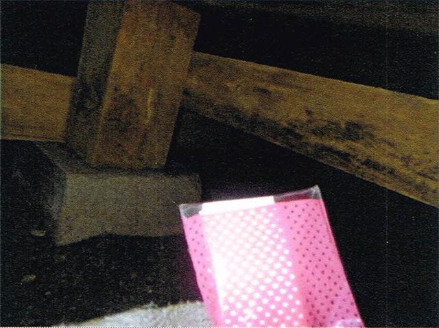 床下のカビ