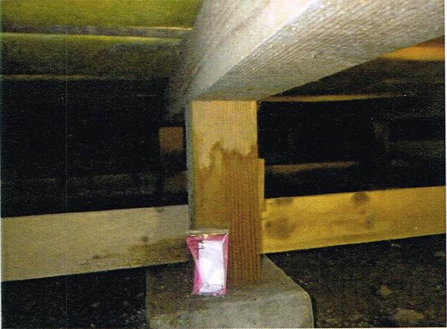 床下の湿気_木材に湿り気