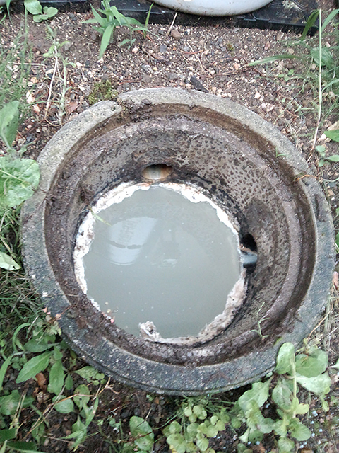 台所の汚水桝と排水管