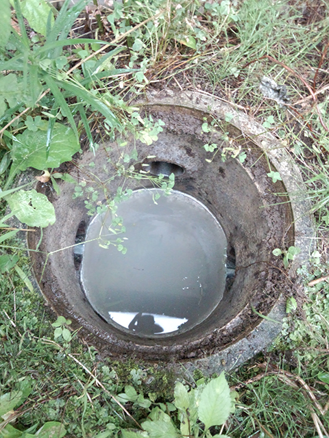 洗面所の汚水桝と排水管